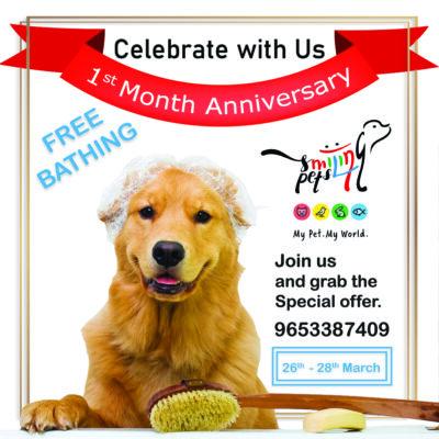 ! month anniversary dog bath
