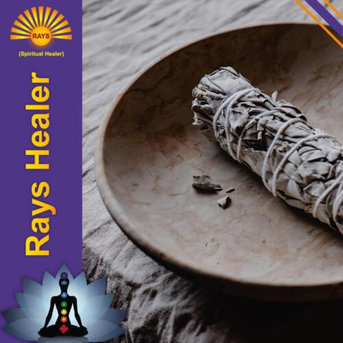 Rays-Healer-sage-roll-1000x1000
